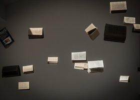 TOEFL Test for Dutch higher studies